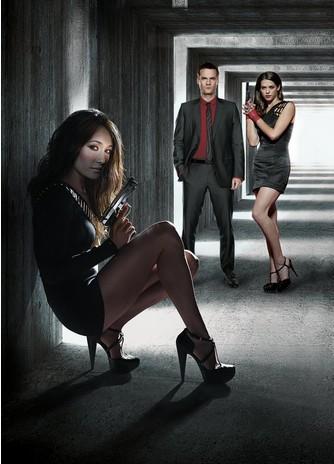 Nikita: The Complete Third Season (2011)