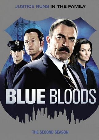 blue bloods: season 2