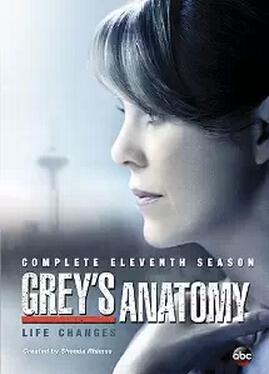 Grey's Anatomy: Season 11