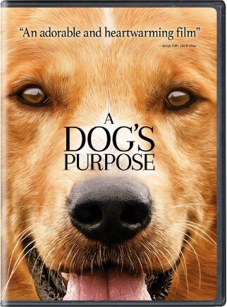 A Dog's Purpose –  Film