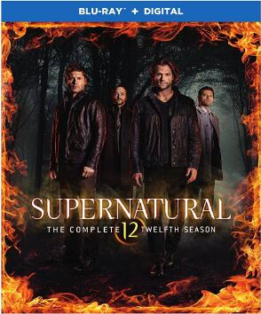Supernatural: Season 12 [Blu-ray]