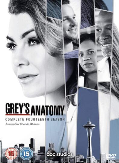 Grey's Anatomy: Season 14 – Region 2