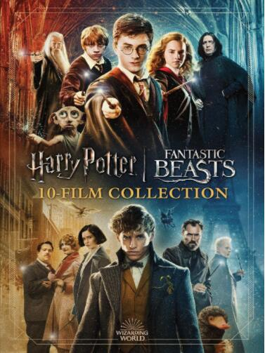 Harry Potter: Fantastic Beasts 10-Film Collection